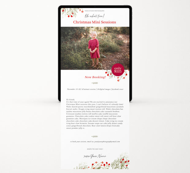 Christmas Email Template for Photographers, Holiday Email Template, Holiday Email Template, Email Marketing Template, Email templates