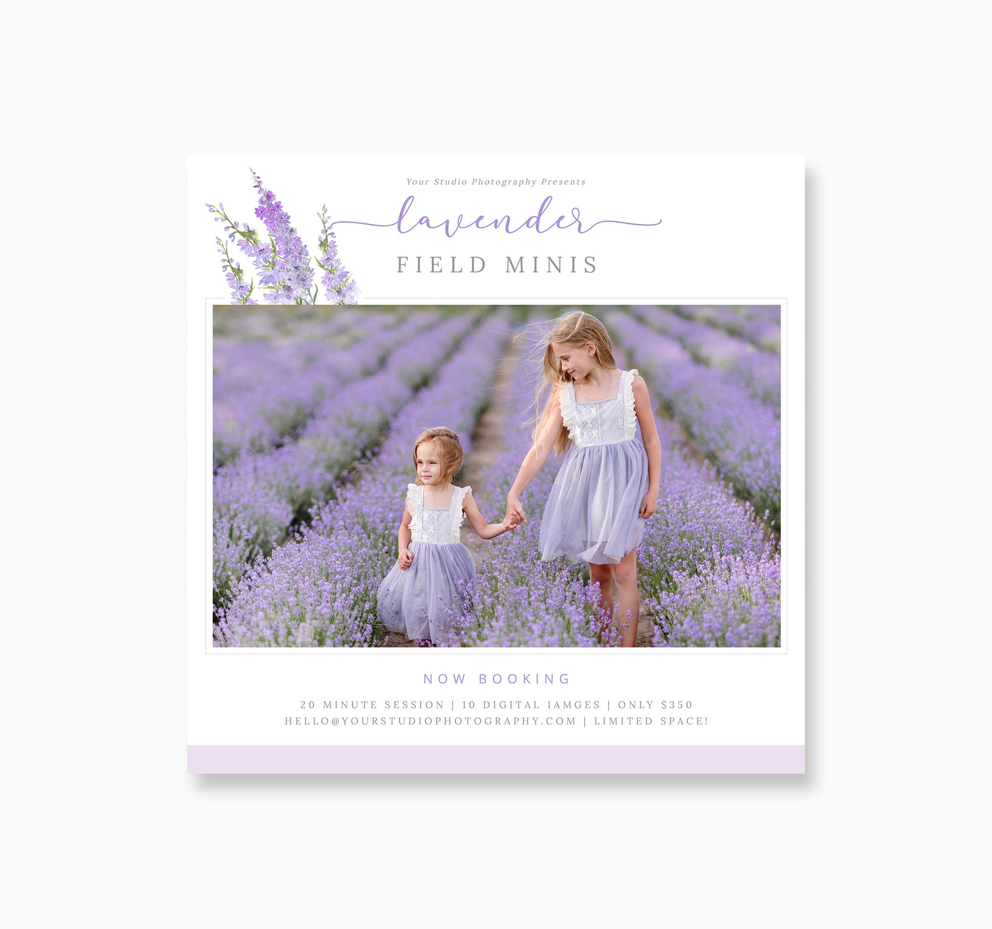 Lavender Mini Session Template, Photoshop Mini Session Template, Marketing Spring Flyer, Photography Marketing, Lavender Minis Template PSD