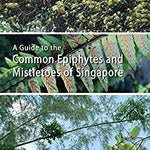 A guide to common Epiphytes and Mistletoes of Singapore