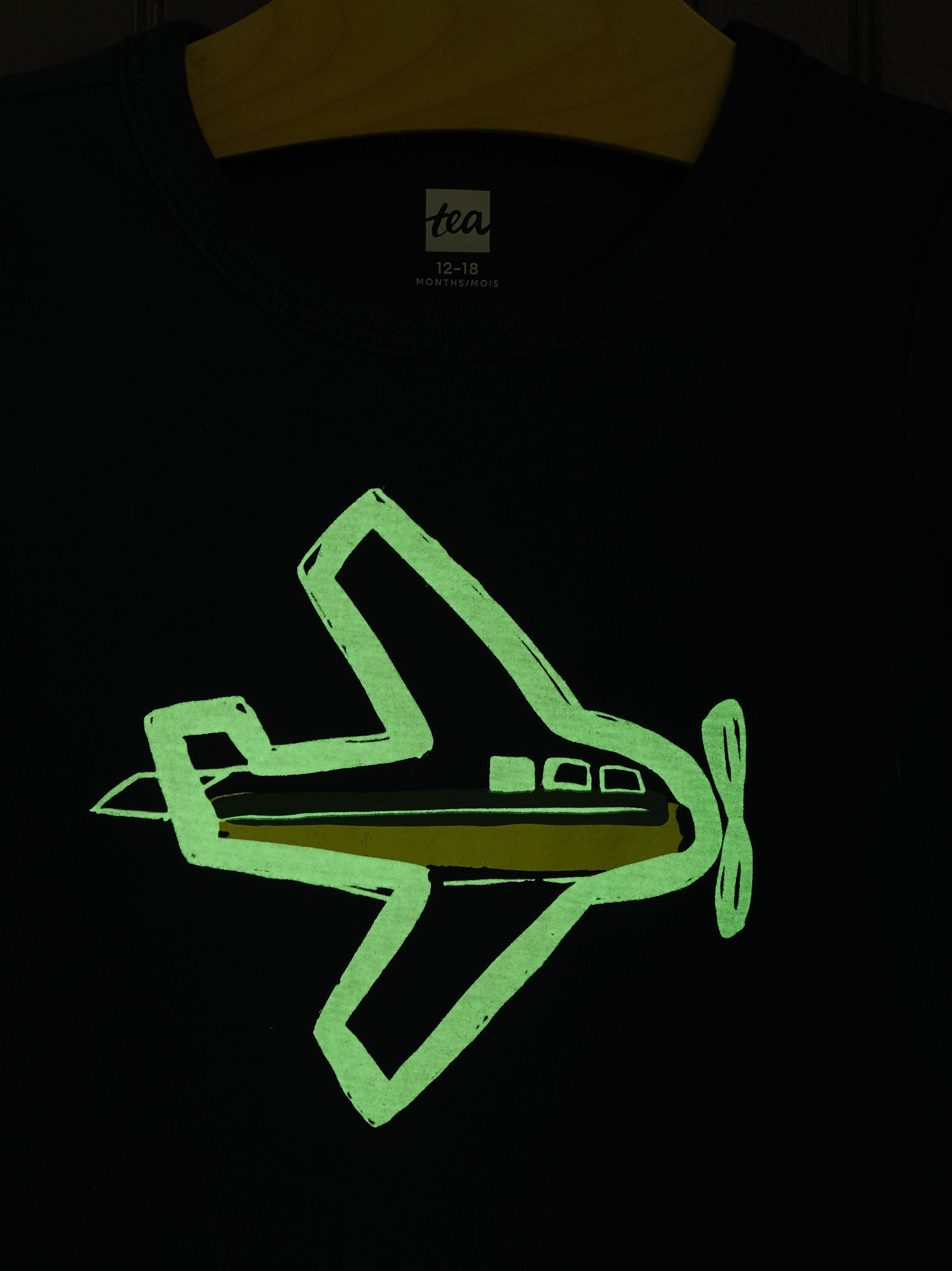 TAKE FLIGHT GRAPHIC TEE