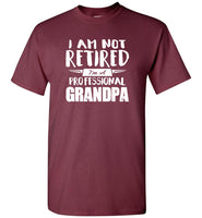 I Am Not Retired I'm A Professional Grandpa, Father's Day Gift Tee Shirt