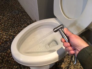 Eco Aligned Toilet Sprayer
