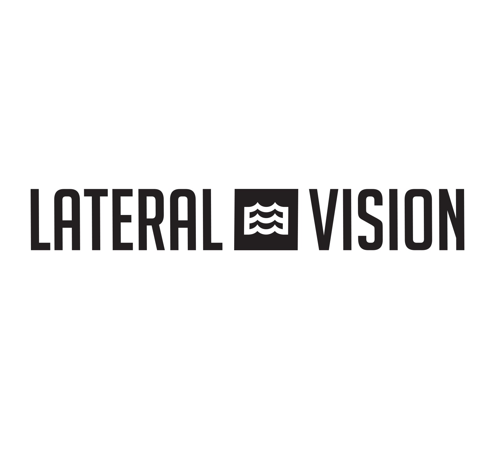"17"" Lateral Vision Decal (Black)"