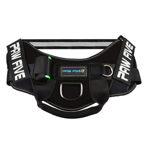 Easy Walk No-Pull Dog Harness - CORE-1 Harness™