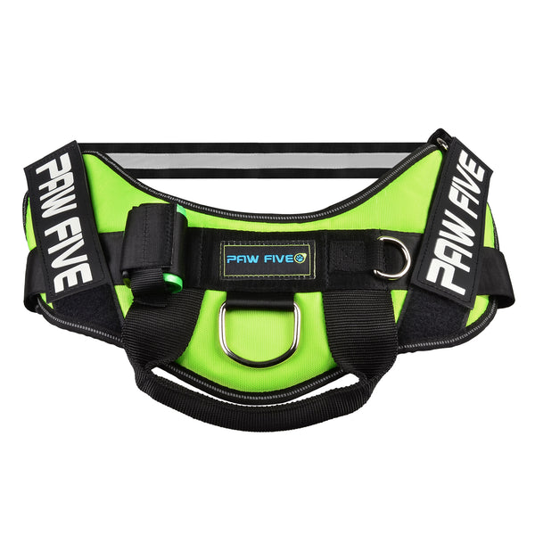 paw five core-1 harness leaf green angle 1