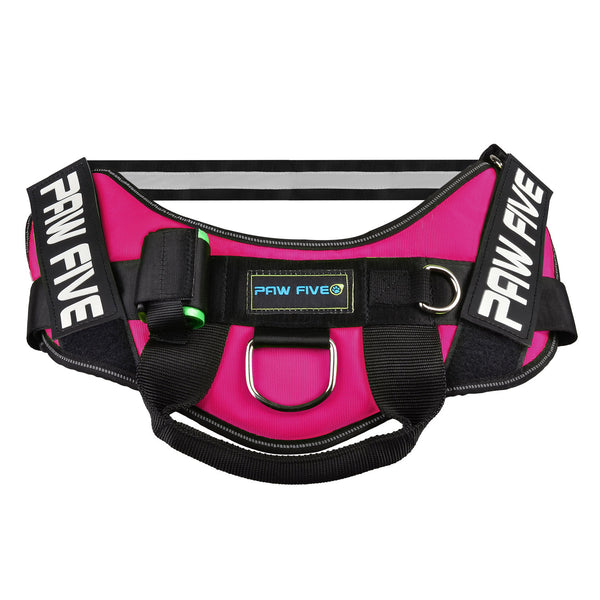 No Pull Harness - Paw Five CORE-1 Harness
