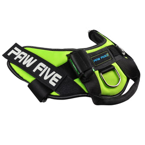 paw five core-1 harness leaf green angle 2