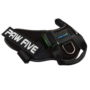 The Best Dog Harness - Paw Five CORE-1 Harness