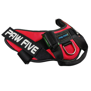 paw five core-1 harnesslava red angle 2
