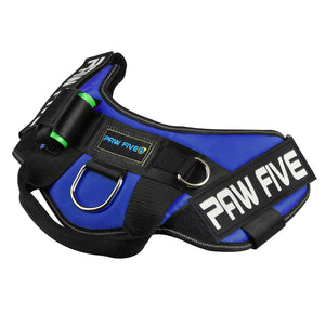 paw five core-1 harness sky blue angle 3