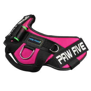 Easy Walk No-Pull Dog Harness - Paw Five CORE-1 Harness™