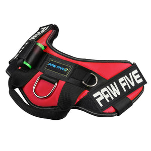 paw five core-1 harnesslava red angle 3