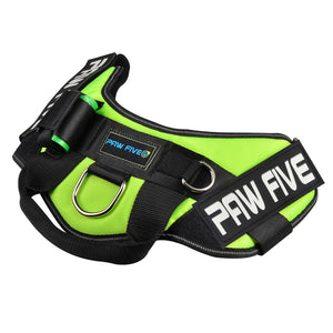 paw five core-1 harness leaf green angle 3