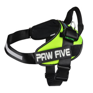 paw five core-1 harness leaf green angle 4