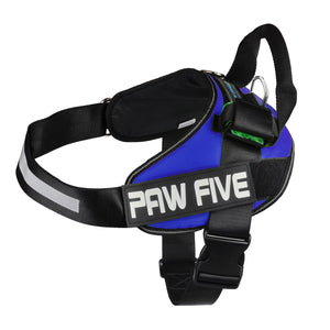 paw five core-1 harness sky blue angle 4