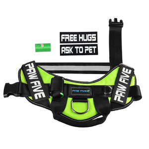 paw five core-1 harness leaf green patches