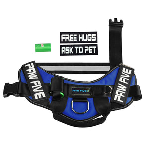 paw five core-1 harness sky blue patches