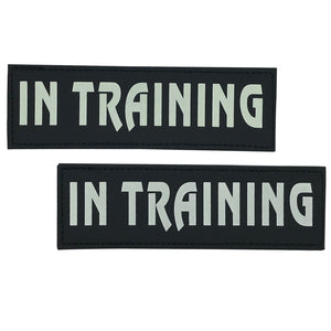 IN TRAINING Velcro Patch (Glow in the Dark)