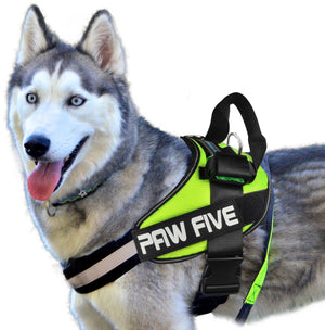 Heavy Duty Big Dog Harness - CORE-1 Harness™