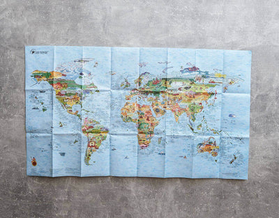 image of best surf spots world map foldable