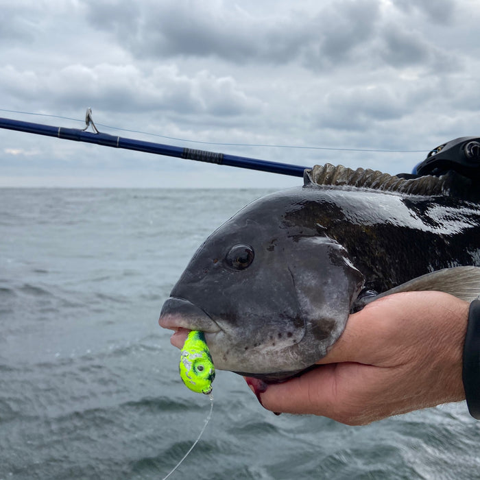 Tackle and Tactics: Jigging for Tog