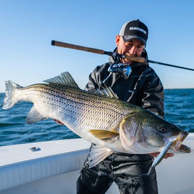 Saltwater Edge Tackle and Tactics: Topwater