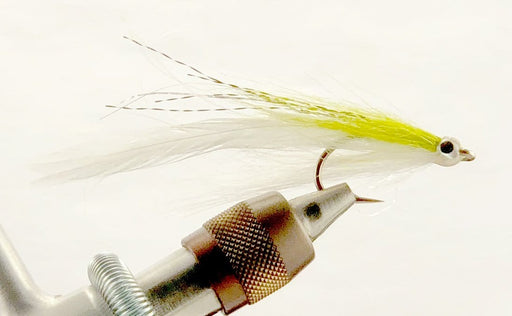 white and chartreuse albie fly fishing fly
