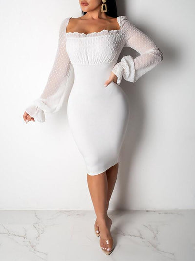Sheer Combo  Bodycon Dress