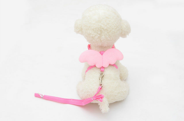 Cute Angel Pet Leashes