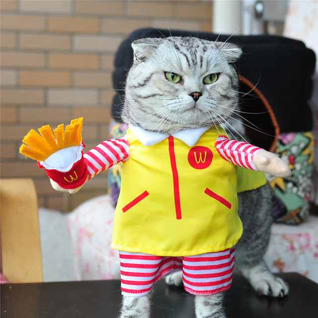 Pet Dressing Up Cosplay