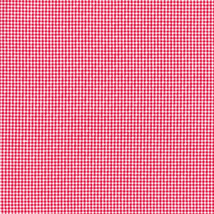 Mini Gingham/Check- red