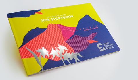 Introducing the 2018 LD£ Storybook...