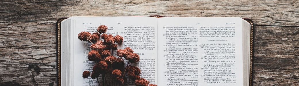 10 Best Bible Study Apps