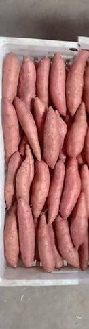 Red Sweat Potatoes