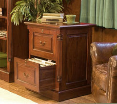 La Roque Two Drawer Filing Cabinet in Mahogany  filing cabinets- Blue Ocean Interiors