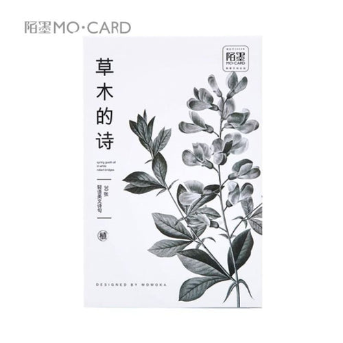 Cute Herb Plants Calligraphy Postcards