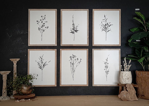 Botanical - Bundle - Set of Six 12 x 16