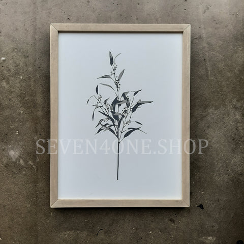 Botanical - Margie - 12 x 16