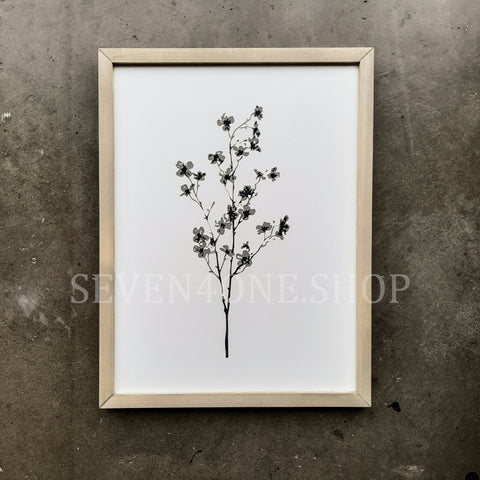 Botanical - Cherry - 12 x 16