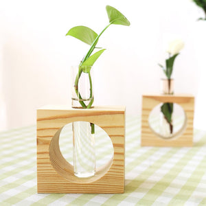 Wood Modern Style Glass Tabletop Plant