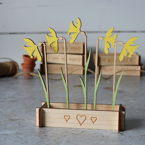 Flower Box Daffodils