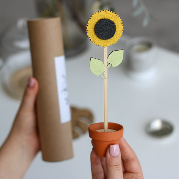 Single wooden Flower Stem in a Terracotta Pot