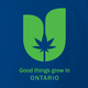 Funny Good things grow in ontario weed blue  t-shirt