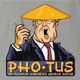 photus potus donald trump ash grey t-shirt