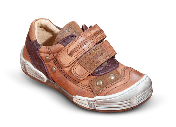 Petasil Brown Gino trainer