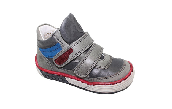 Bo-bell Grey Ranger trainer