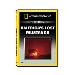 National Geographic Lost Mustang Dvd