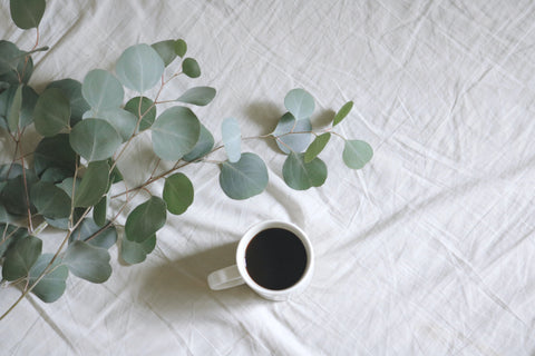 Eucalyptus essential oil may be able to boost energy and promote mental clarity.