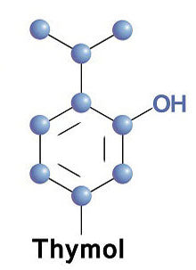 Chemical structure of Thymol