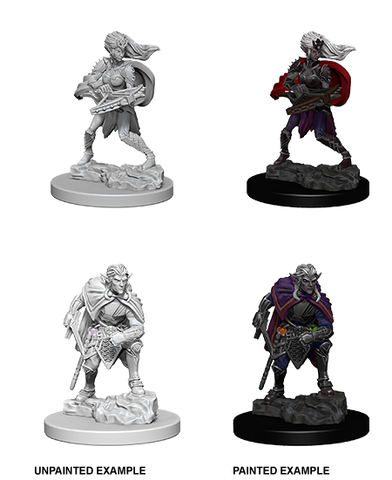 D&D Miniatures: Nolzur's Marvelous Miniatures: Drow